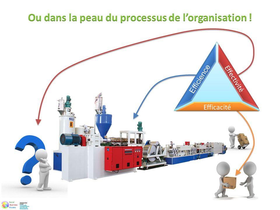 Ou dans la peau du processus de l'organisation !
