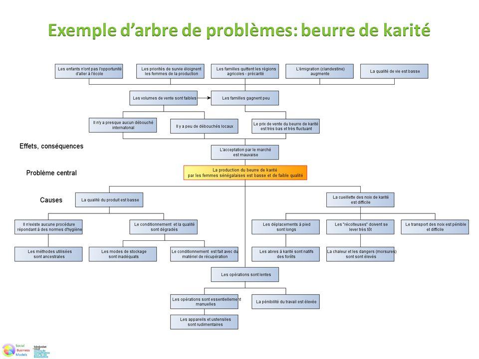 Exemple d'arbre de problèmes: beurre de karité
