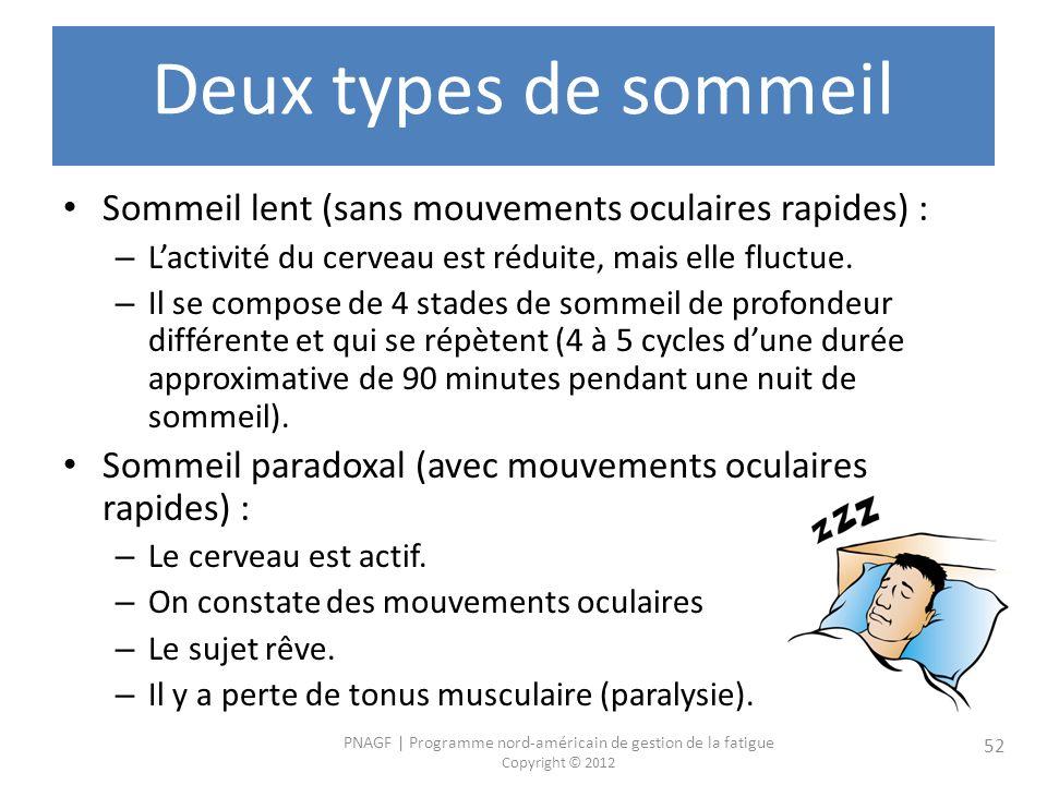 Deux types de sommeil Sommeil lent (sans mouvements oculaires rapides) : L'activité du cerveau est réduite, mais elle fluctue.
