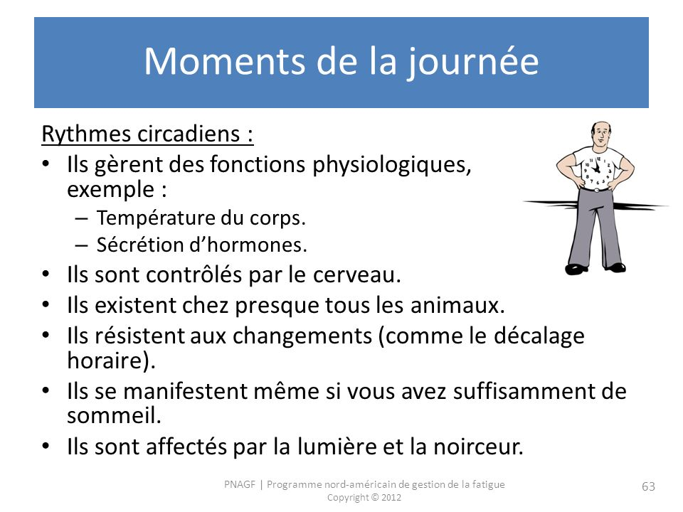 Moments de la journée Rythmes circadiens :