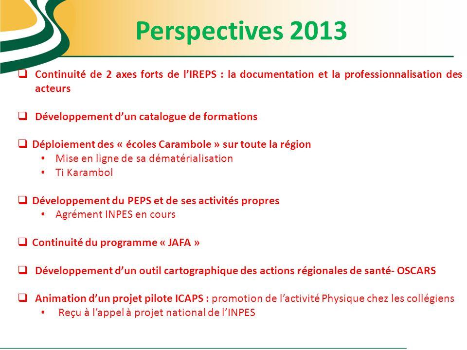 Perspectives 2013 Continuité de 2 axes forts de l'IREPS : la documentation et la professionnalisation des acteurs.