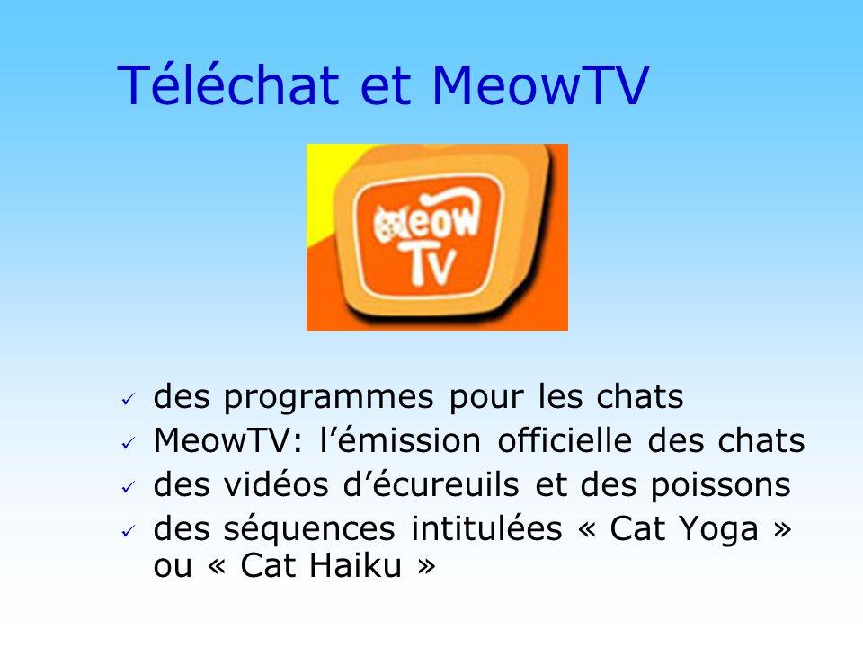 Téléchat et MeowTV des programmes pour les chats