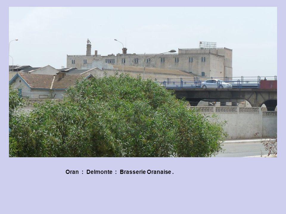 Oran : Delmonte : Brasserie Oranaise .