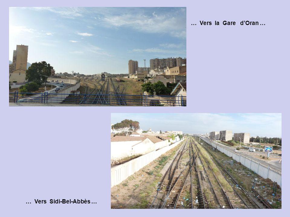 … Vers la Gare d'Oran … … Vers Sidi-Bel-Abbès …