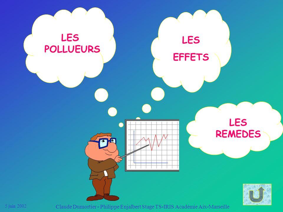 LES POLLUEURS EFFETS LES REMEDES