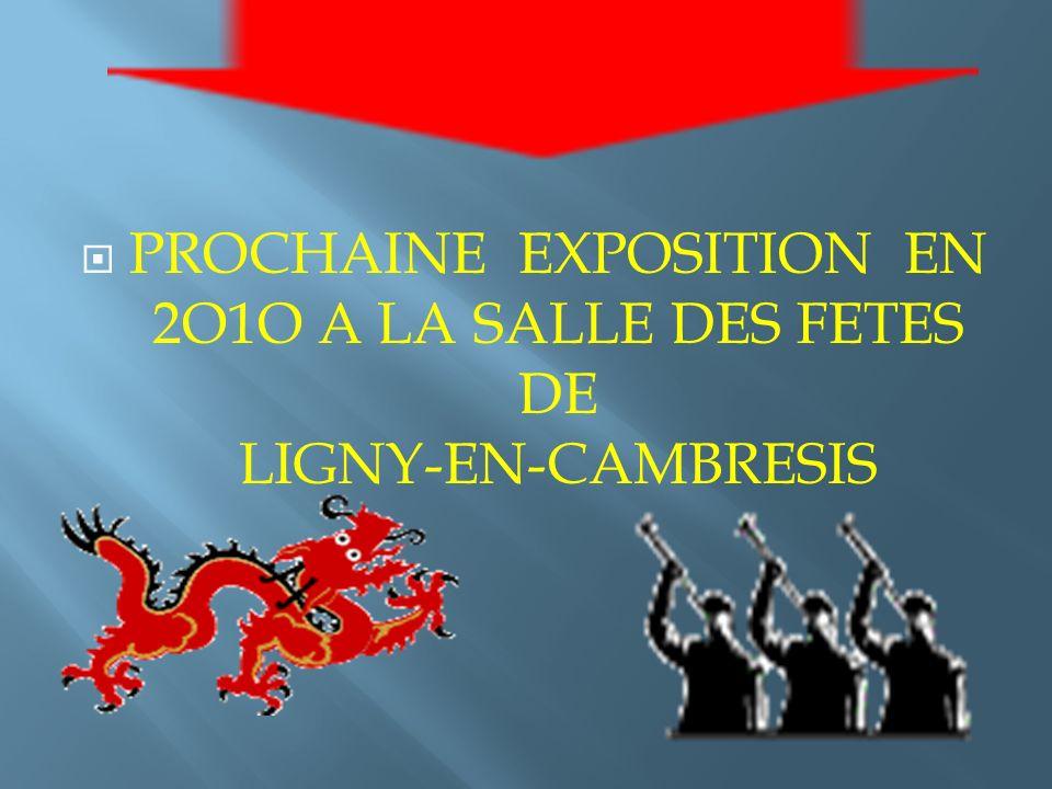 PROCHAINE EXPOSITION EN 2O1O A LA SALLE DES FETES DE LIGNY-EN-CAMBRESIS