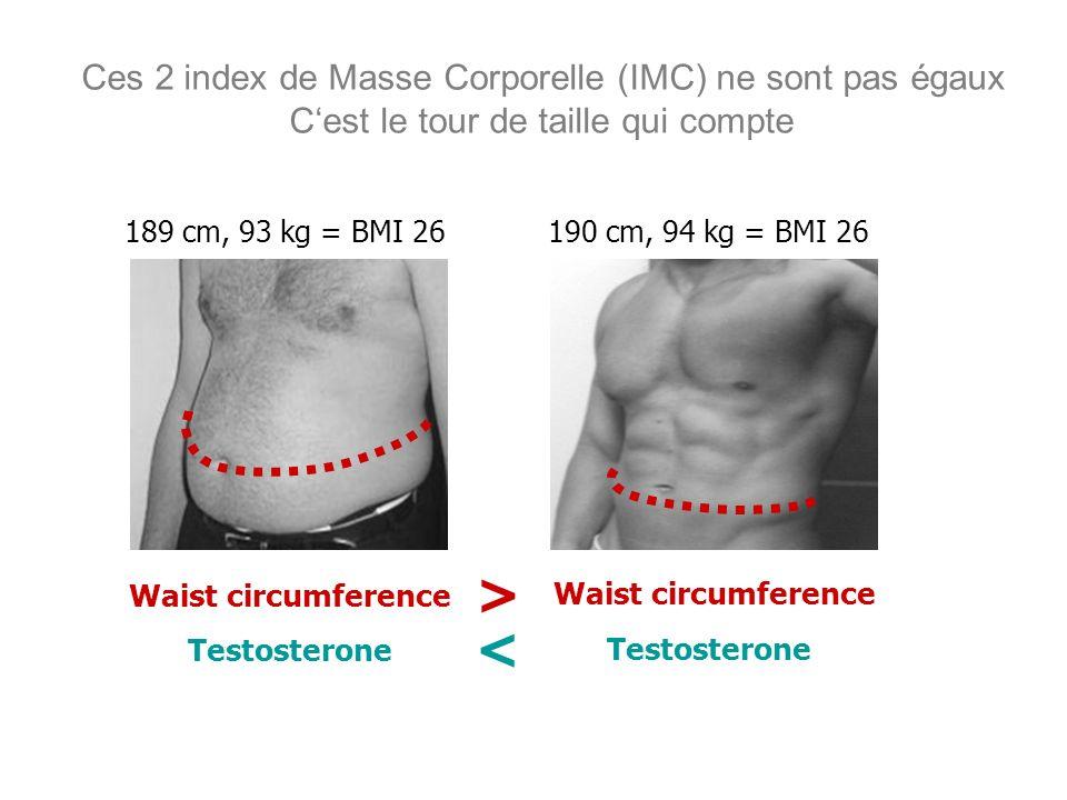 Ces 2 index de Masse Corporelle (IMC) ne sont pas égaux C'est le tour de taille qui compte