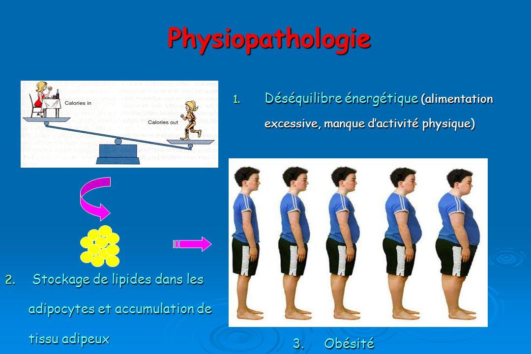 Physiopathologie Déséquilibre énergétique (alimentation excessive, manque d'activité physique)