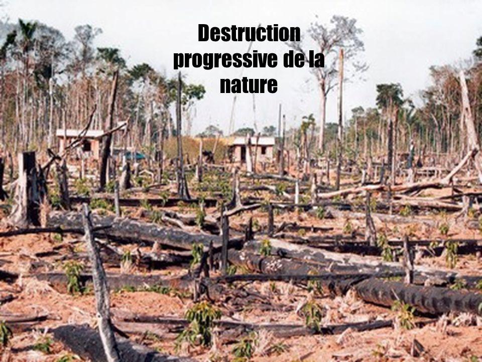 Destruction progressive de la nature