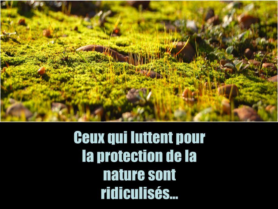 Ceux qui luttent pour la protection de la nature sont ridiculisés…