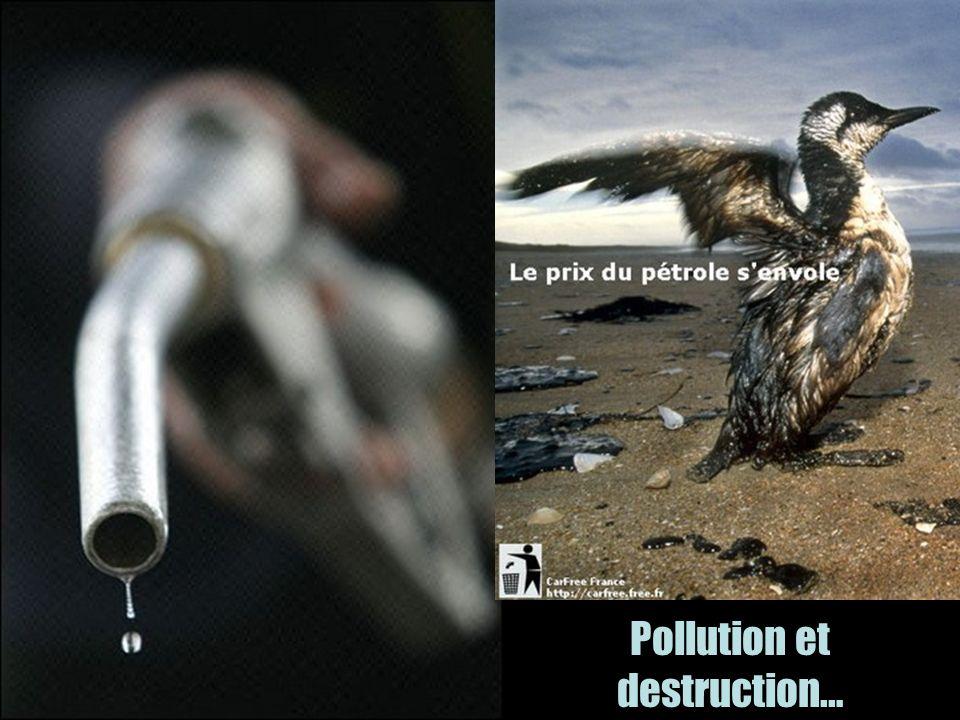 Pollution et destruction…