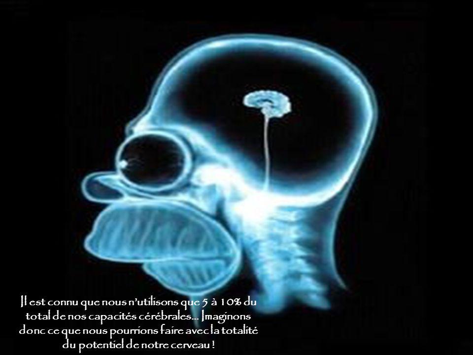 Il est connu que nous n'utilisons que 5 à 10% du total de nos capacités cérébrales… Imaginons donc ce que nous pourrions faire avec la totalité du potentiel de notre cerveau !