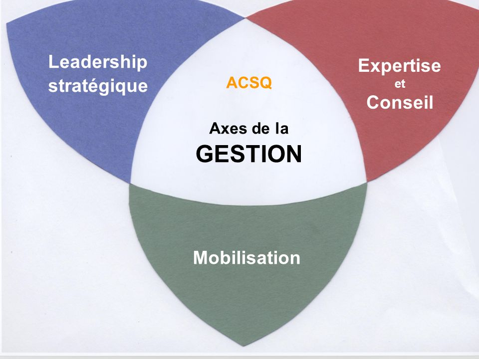 Leadership stratégique Expertise Conseil Mobilisation