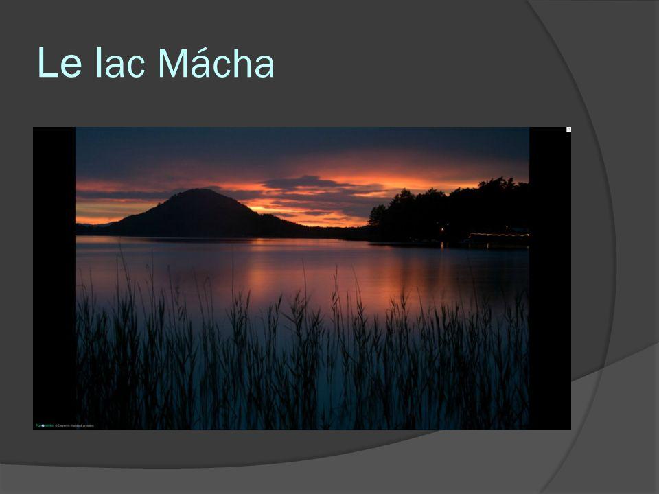 Le lac Mácha