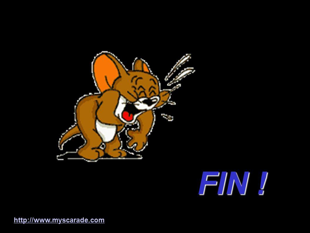 FIN ! http://www.myscarade.com