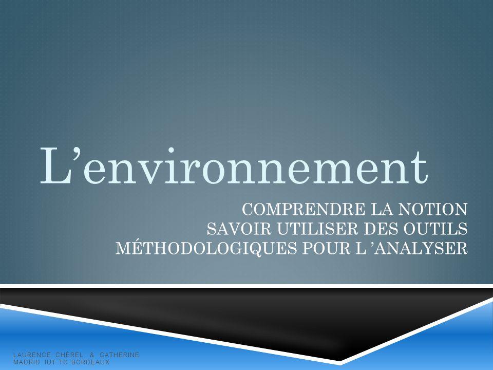 L'environnement Comprendre la notion Savoir utiliser des outils méthodologiques pour l 'analyser.