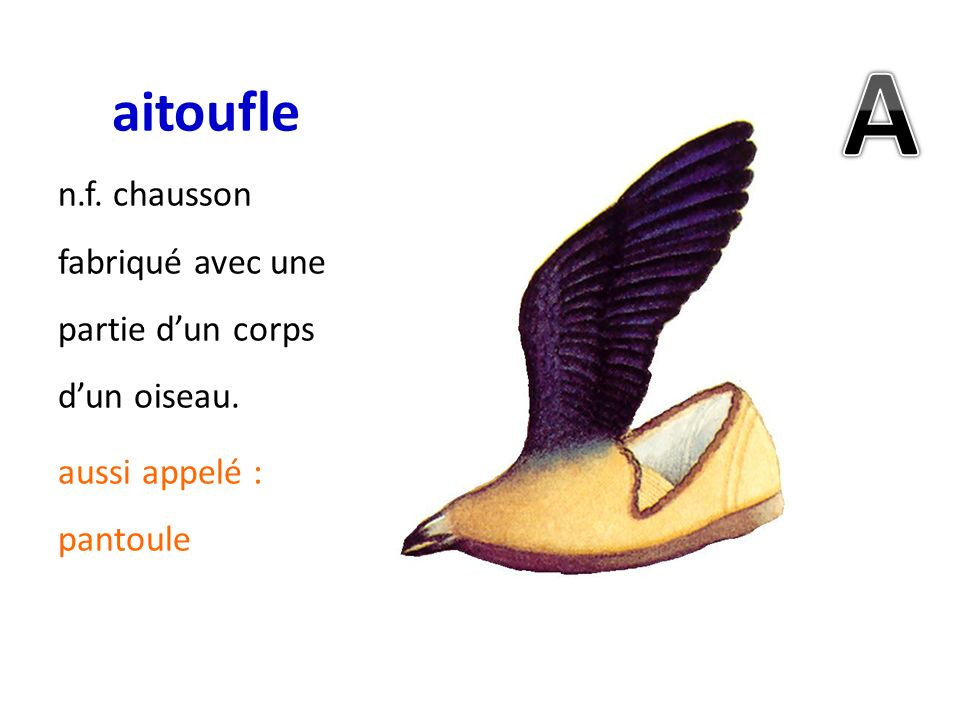 aitoufle A n.f. chausson fabriqué avec une partie d'un corps d'un oiseau. aussi appelé : pantoule