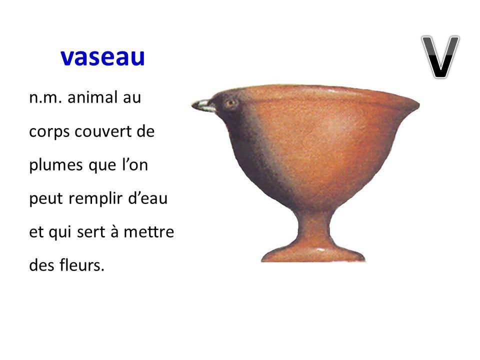 vaseau V. n.m.