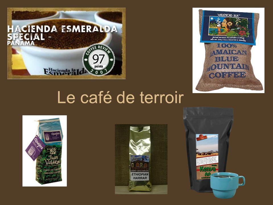 Le café de terroir