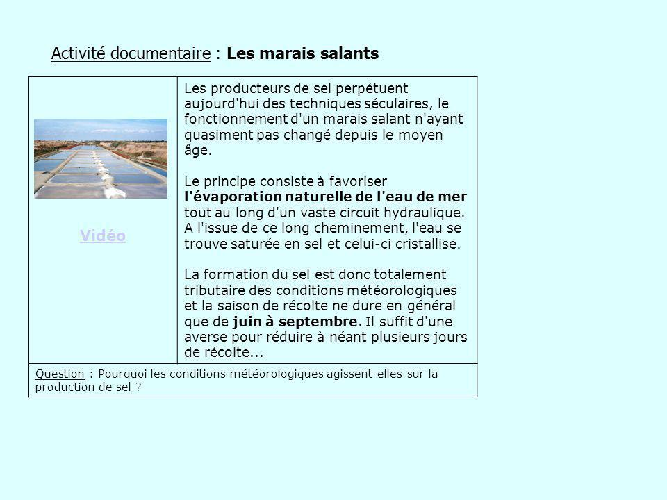 Activité documentaire : Les marais salants