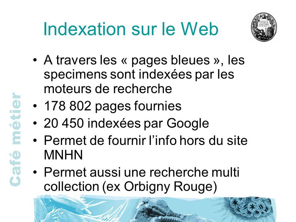 Indexation sur le Web A travers les « pages bleues », les specimens sont indexées par les moteurs de recherche.