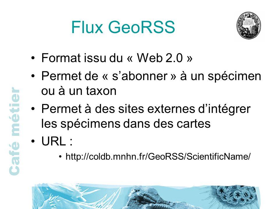 Flux GeoRSS Format issu du « Web 2.0 »