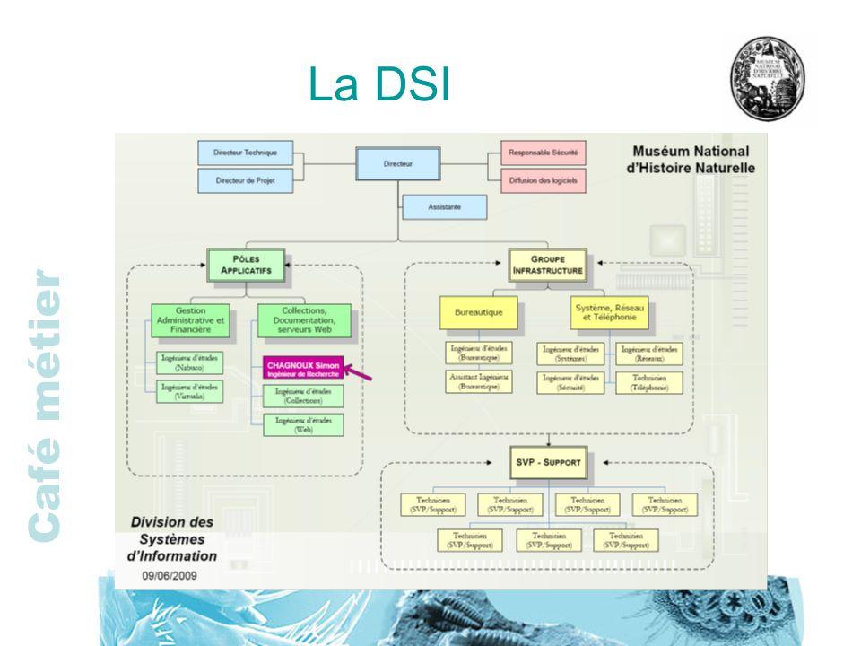 La DSI