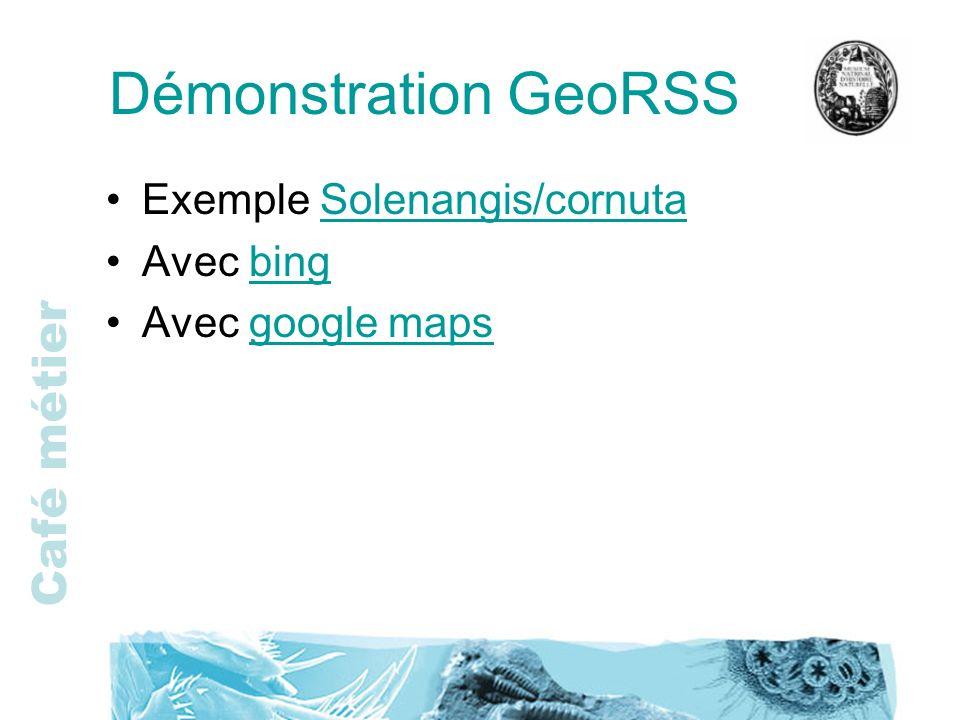 Démonstration GeoRSS Exemple Solenangis/cornuta Avec bing