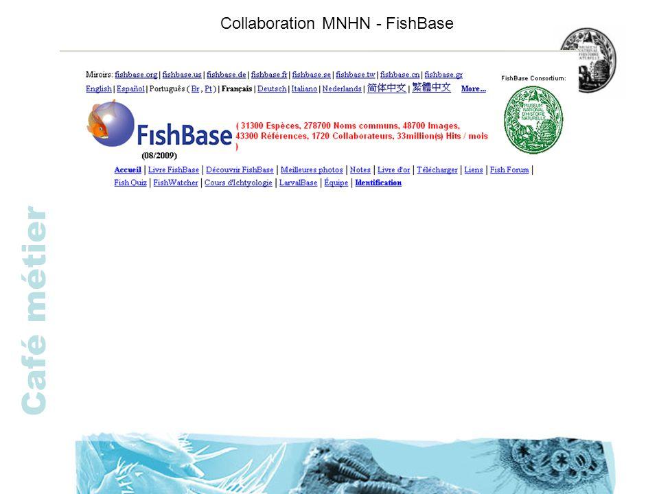 Collaboration MNHN - FishBase