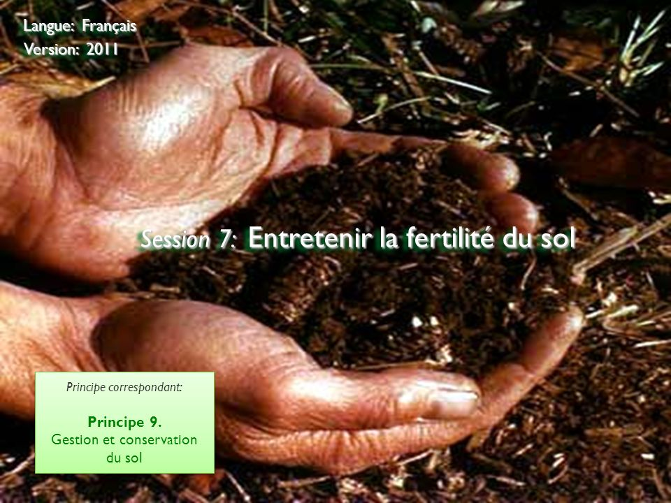 Session 7: Entretenir la fertilité du sol