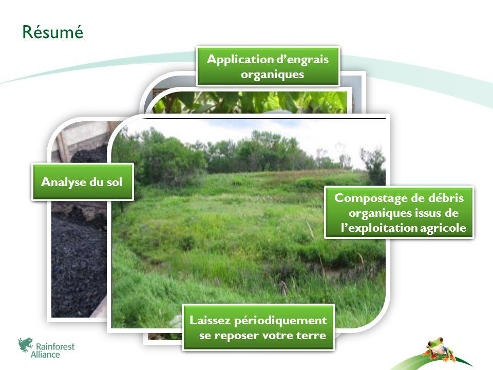 Résumé Application d'engrais organiques