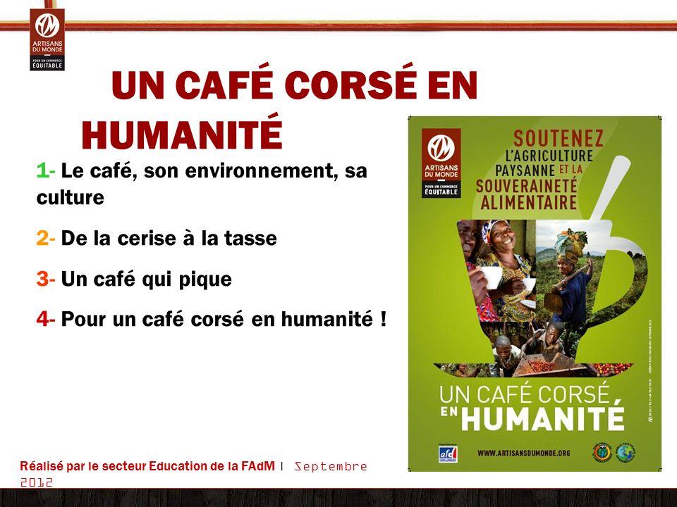 UN CAFÉ CORSÉ EN HUMANITÉ