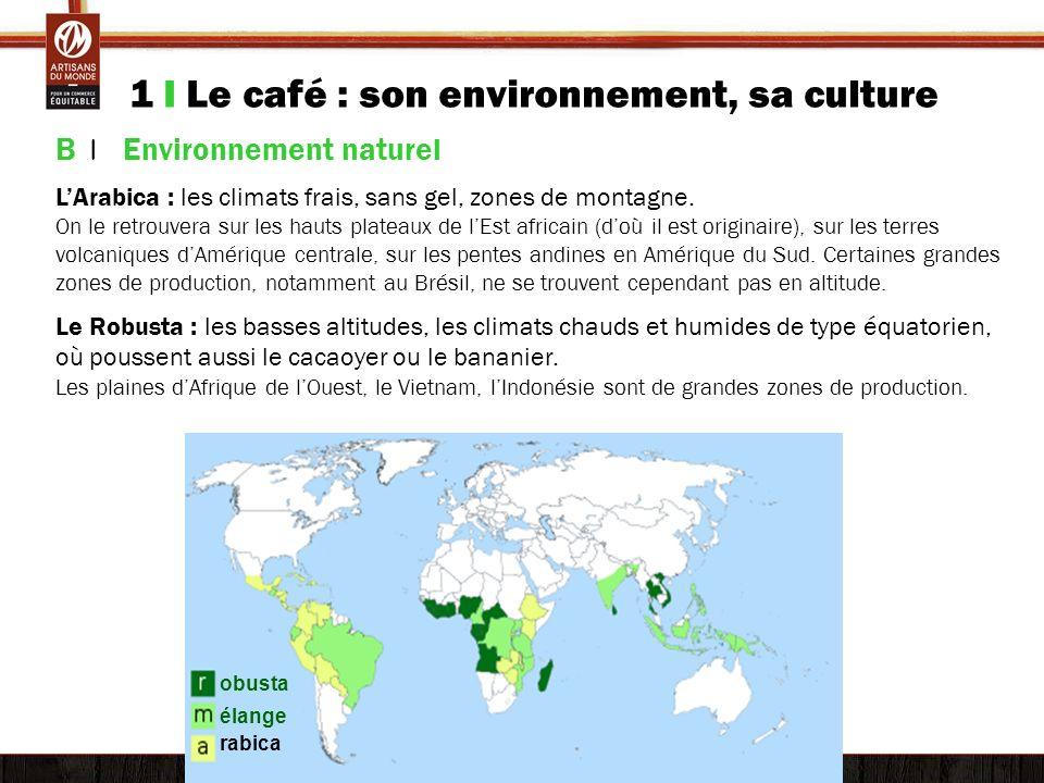 1 I Le café : son environnement, sa culture