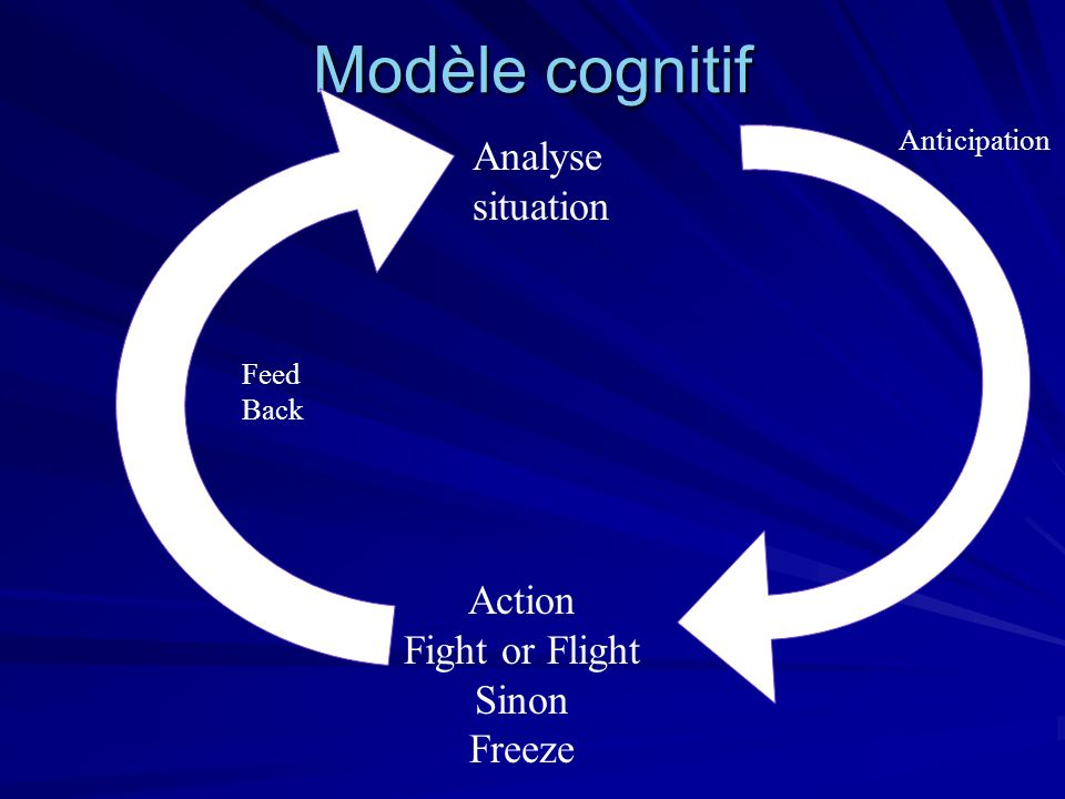 Modèle cognitif Analyse situation Action Fight or Flight Sinon Freeze