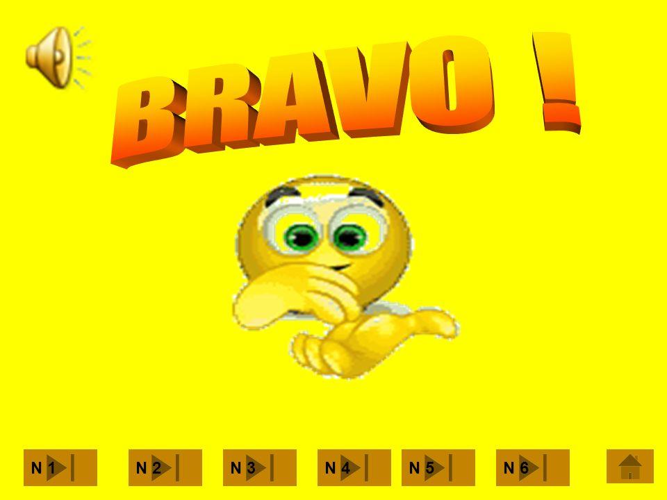 BRAVO ! N 1 N 2 N 3 N 4 N 5 N 6