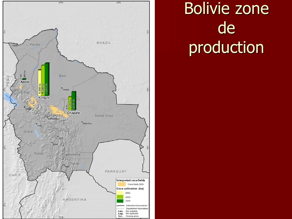 Bolivie zone de production