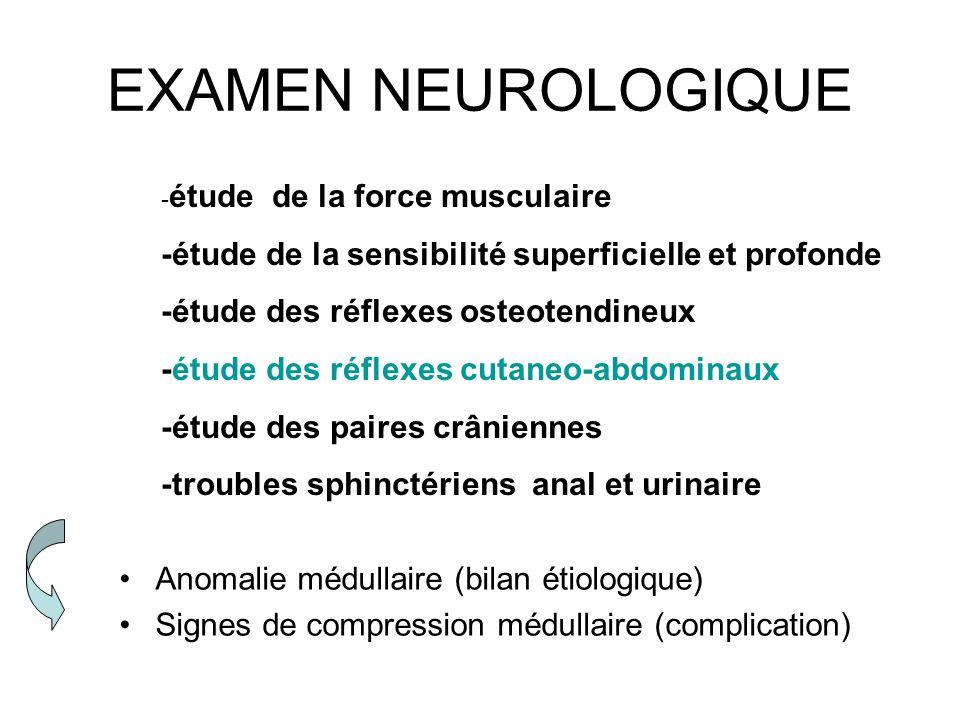 EXAMEN NEUROLOGIQUE -étude de la sensibilité superficielle et profonde
