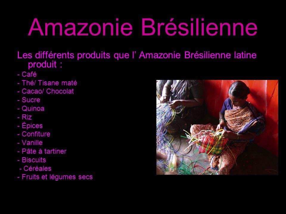 Amazonie Brésilienne Les différents produits que l' Amazonie Brésilienne latine produit : - Café. - Thé/ Tisane maté.