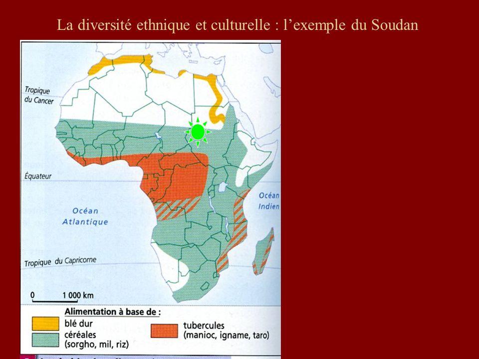 La diversité ethnique et culturelle : l'exemple du Soudan