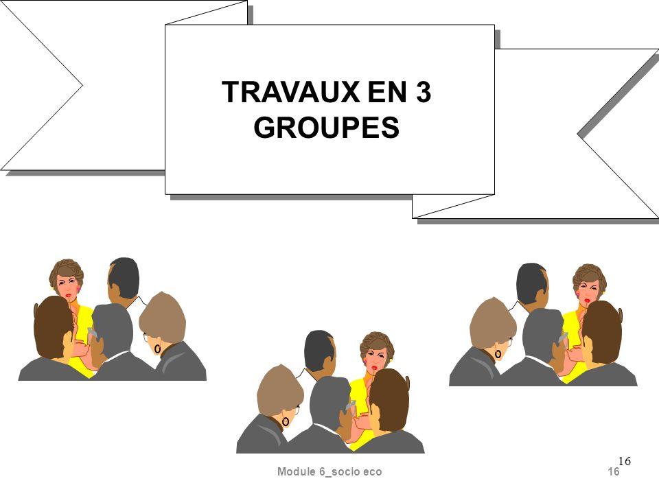 TRAVAUX EN 3 GROUPES 16 Module 6_socio eco