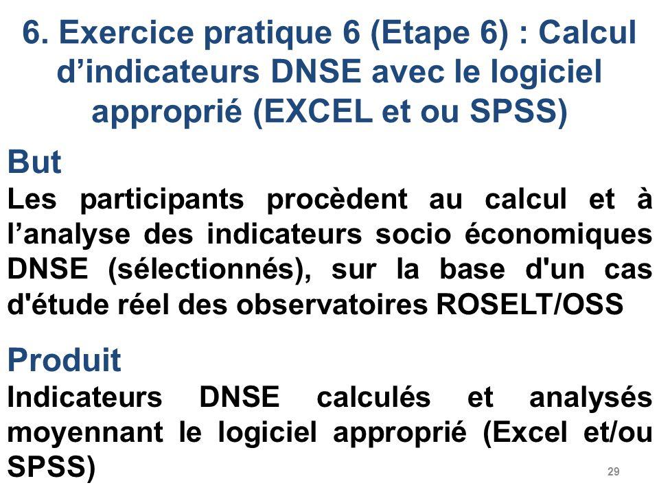 6. Exercice pratique 6 (Etape 6) : Calcul d'indicateurs DNSE avec le logiciel approprié (EXCEL et ou SPSS)