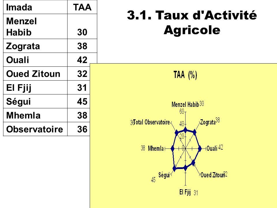 3.1. Taux d Activité Agricole