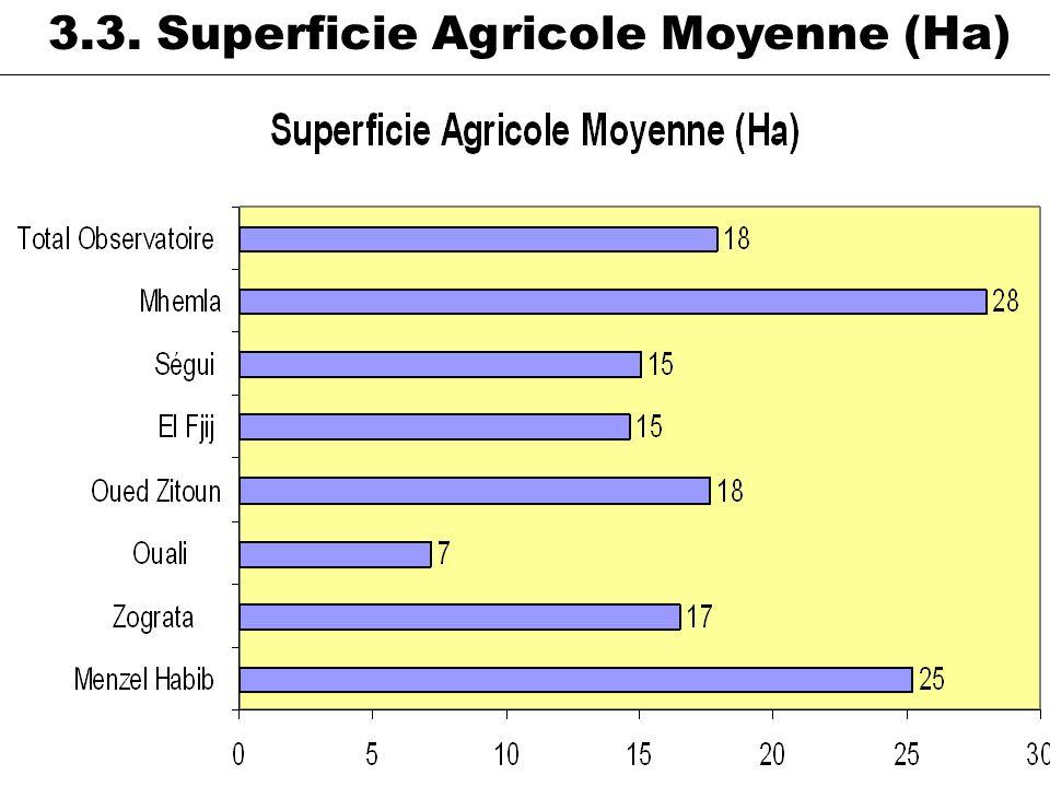 3.3. Superficie Agricole Moyenne (Ha)