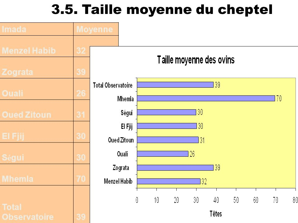 3.5. Taille moyenne du cheptel