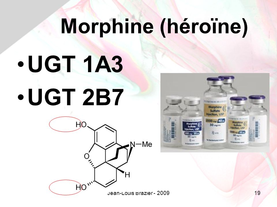 Morphine (héroïne) UGT 1A3 UGT 2B7 Jean-Louis Brazier - 2009