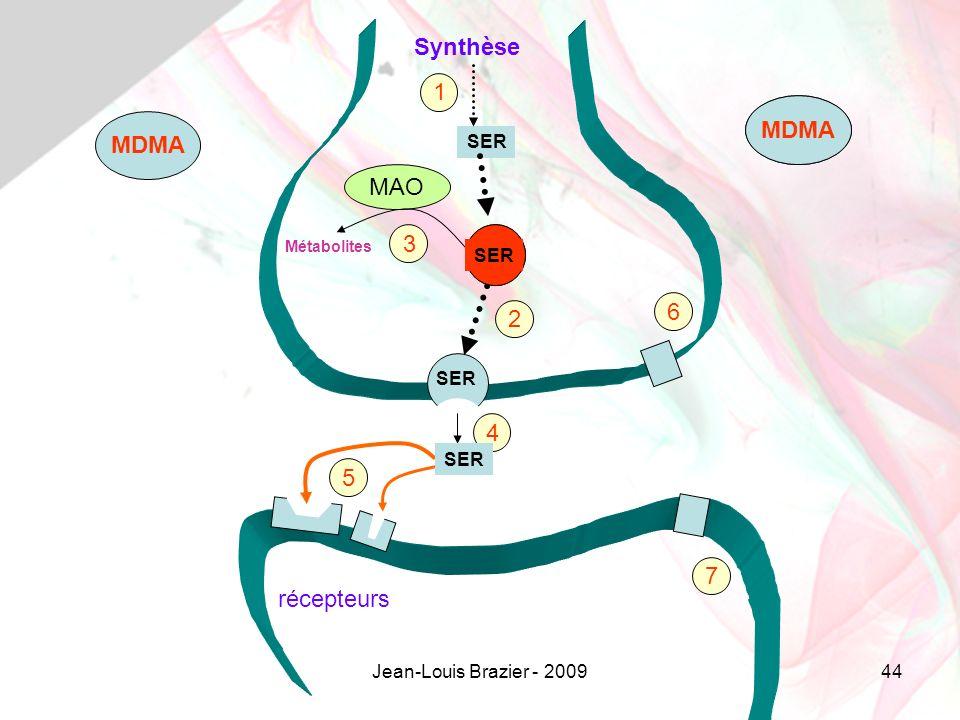 Synthèse 1 MDMA MDMA MDMA MAO 3 6 2 4 5 7 récepteurs SER SER SER SER
