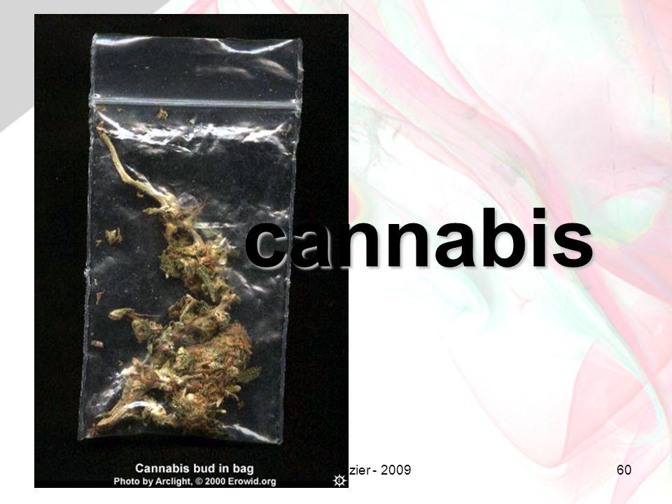cannabis Jean-Louis Brazier - 2009