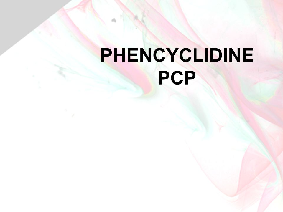 PHENCYCLIDINE PCP