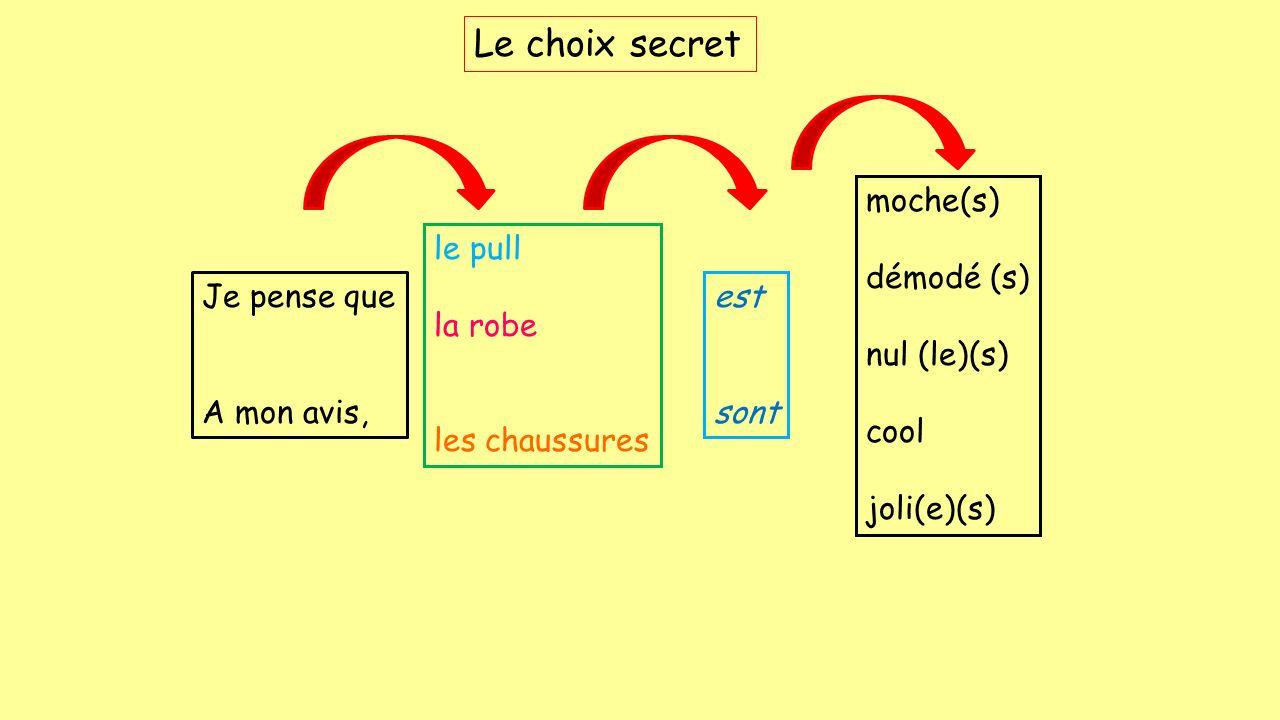 Le choix secret moche(s) démodé (s) nul (le)(s) cool joli(e)(s)