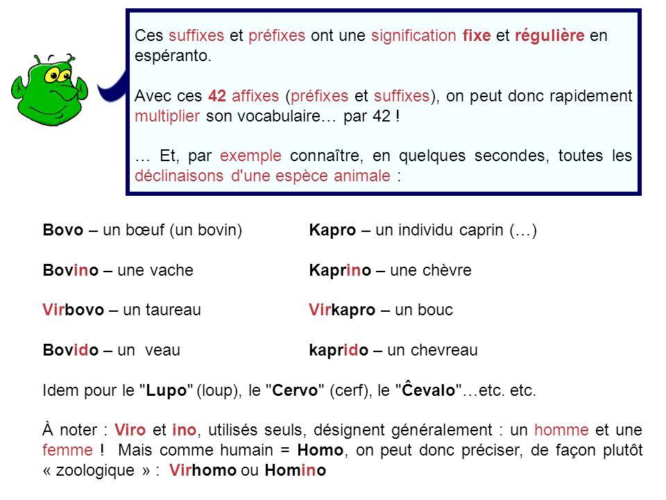 Ces suffixes et préfixes ont une signification fixe et régulière en espéranto.